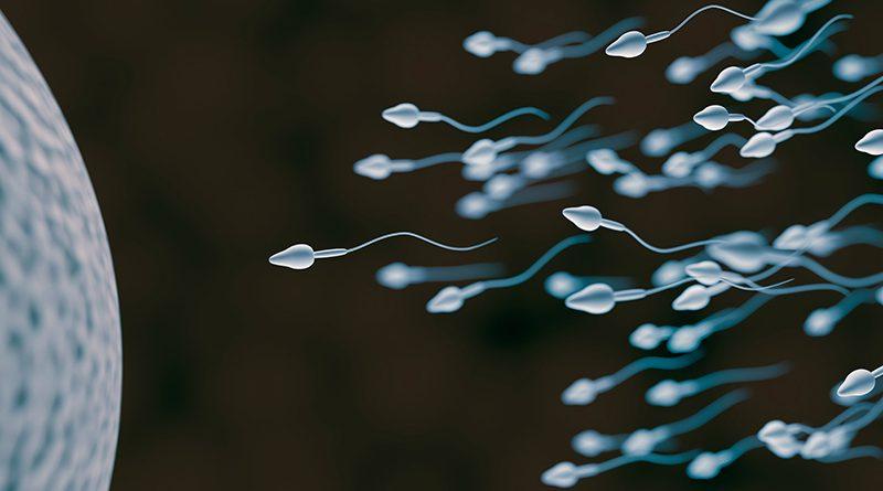 Contaminación y esperma