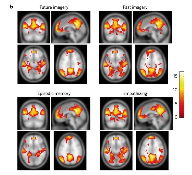 Cerebro y recuerdos